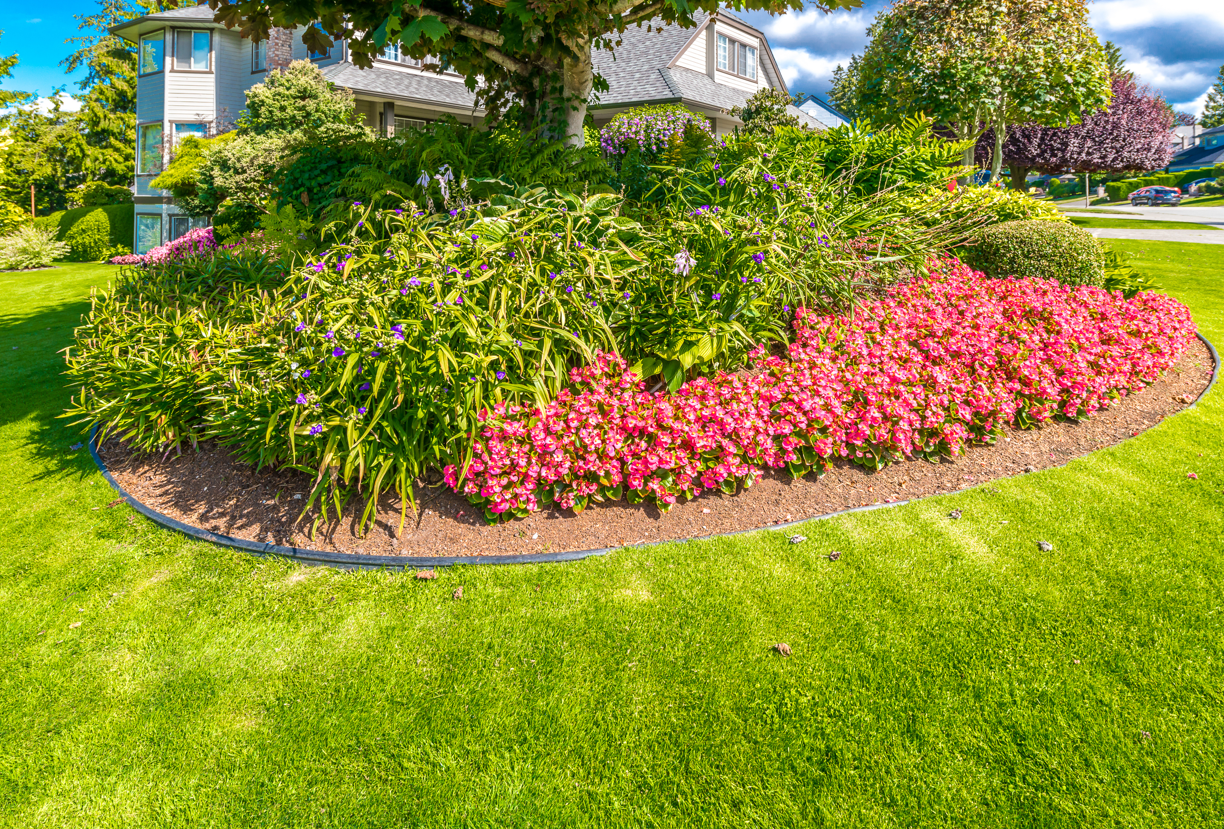 25+ Ways to Achieve the Perfect Lawn Edge | House Tipster
