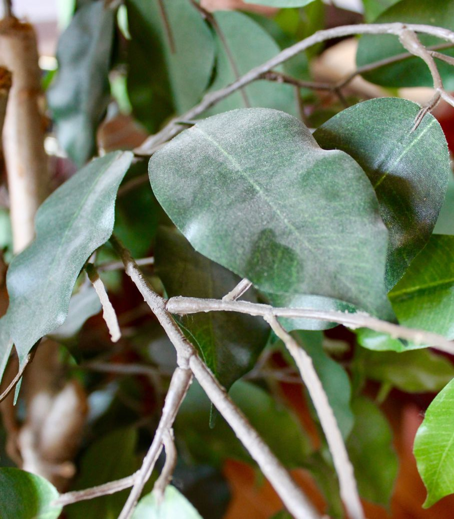 Bring Artificial Plants Back To Life With A Simple Homemade Cleaner