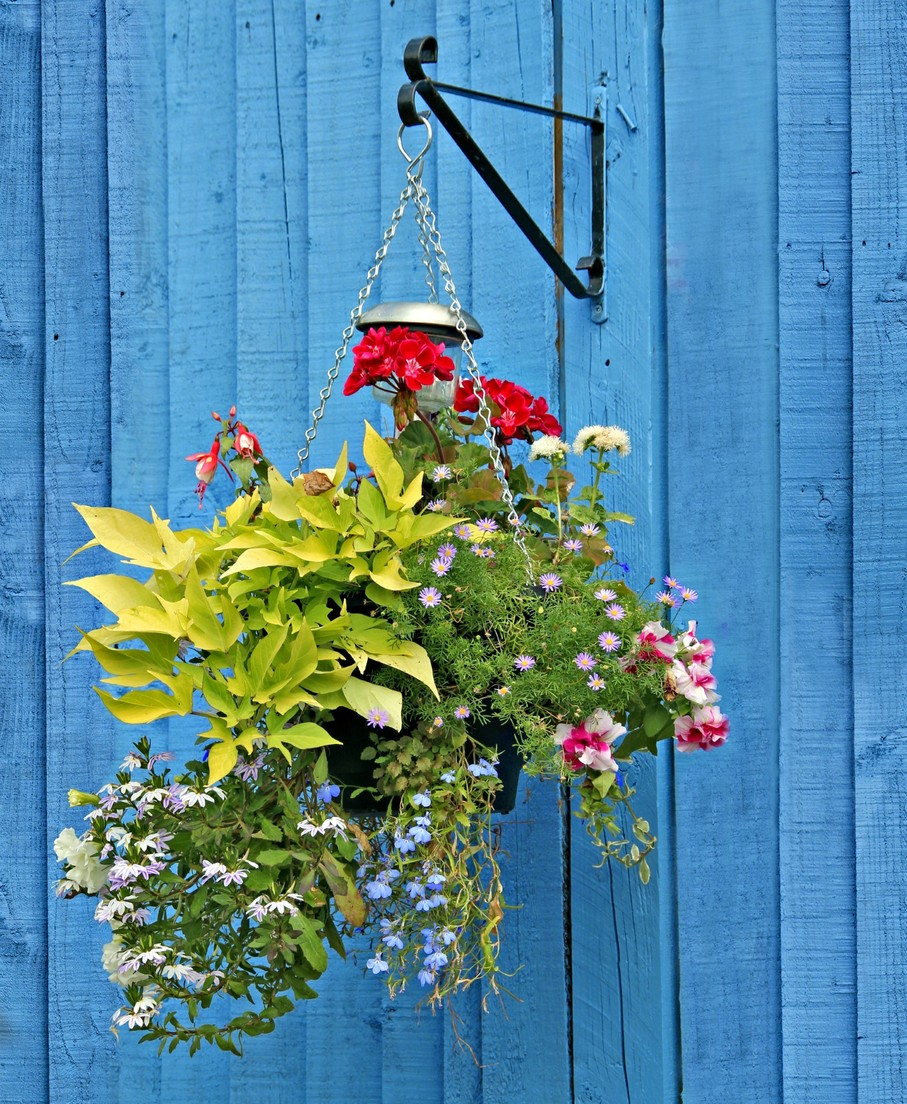 Why You Need Large Hanging Basket Brackets In Your Life