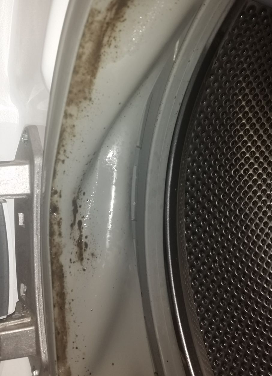 Do Your Towels Smell Funky Hidden Mold Could Be The Problem