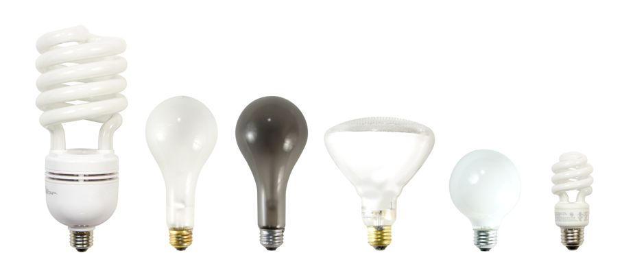 Various incandescent and fluorescent light bulbs. Large fluorescent, incandescent, burned out bulb, flood light, decorative bulb, small fluorescent bulb