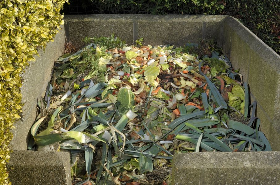 Garden compost heap with kitchen food waste, vegetables, fruit peel and green refuse