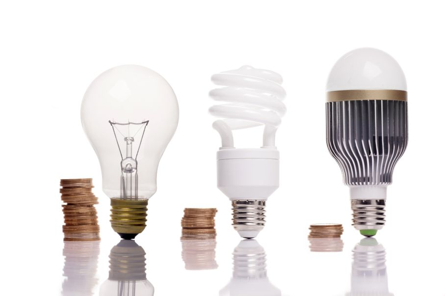 Money spent on different types of light bulbs