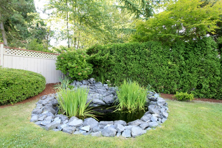 Backyard pond with grey rocks and green fenced yard