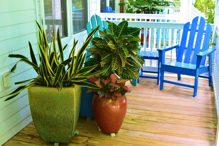 Colorful potted plants and rustic wooden furniture taken on an outdoor patio