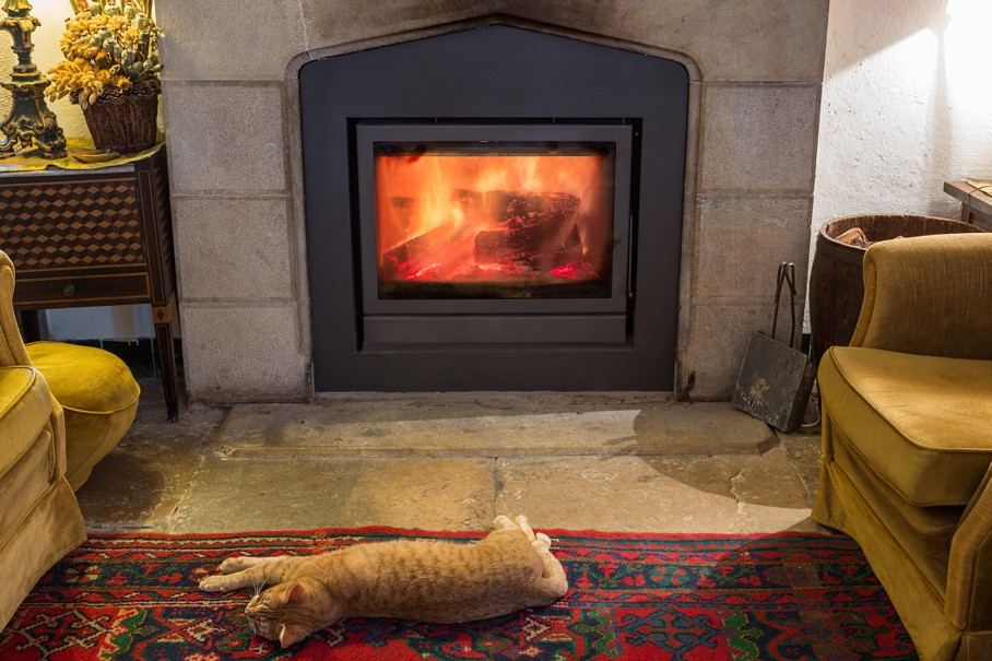 Red cat is basking by the fireplace in the cozy room