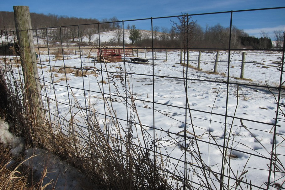 Tips for Selecting the Best Rural Fencing