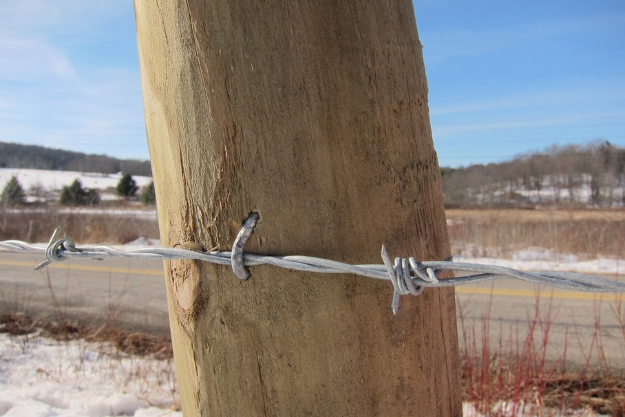 How To Choose The Correct Fence Post For Your Rural Fencing