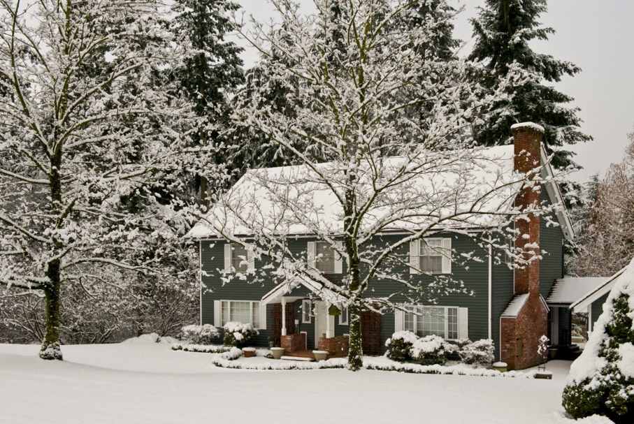 Home with snow and trees in winter