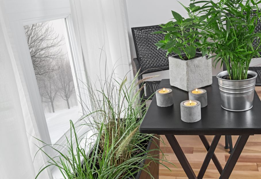 Green plants and candles decorating a room