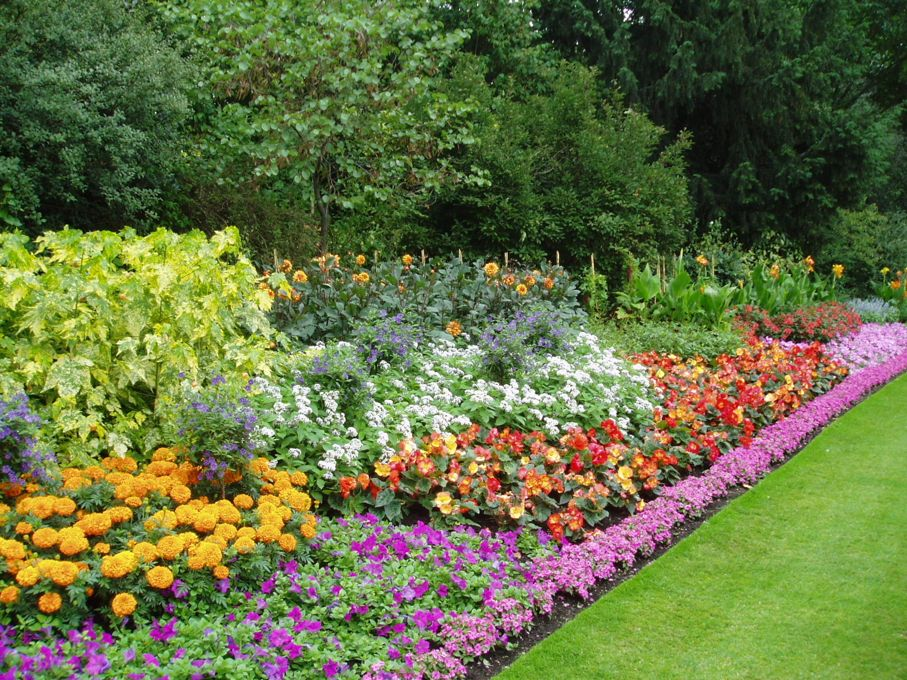 Bed of flowers in english garden