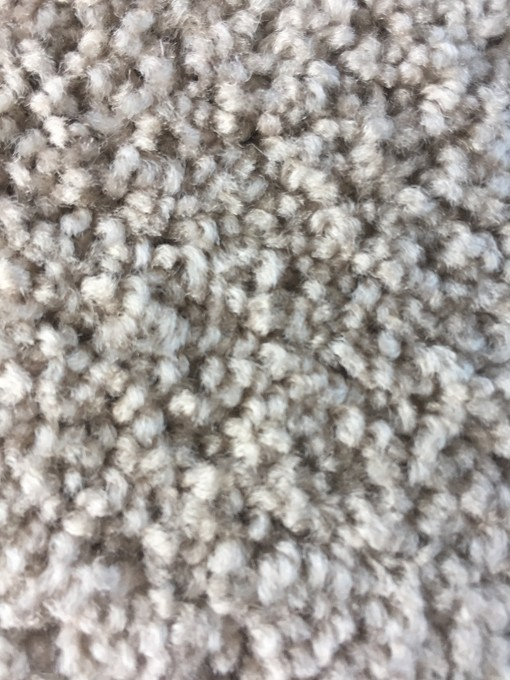 Which Carpet Fiber Is Best For Your Home