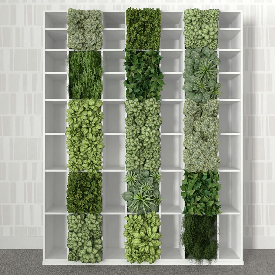 Empty bookshelf with vertical garden